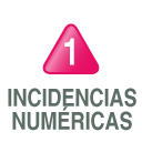 incidencias numéricas